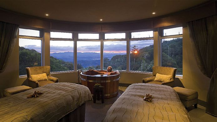 View of O'Reilly's Rainforest Retreat Gold Coast - Muslim Friendly Travel in Gold Coast